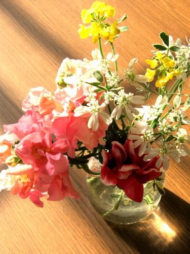 14昼のひととき花