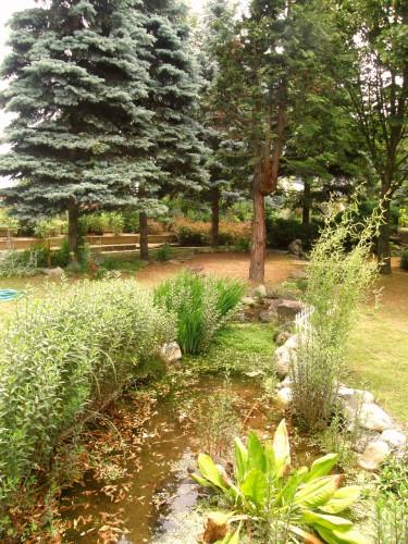15 6 17 HAMA ガーデン ホプシー