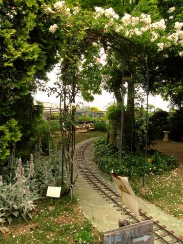 15 6 17 HAMA ガーデン 線路