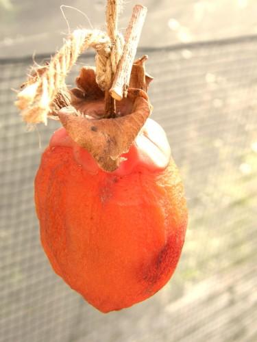 15 11 21 干し柿