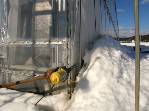 16 1 19 雪 第二農場 サイド 2