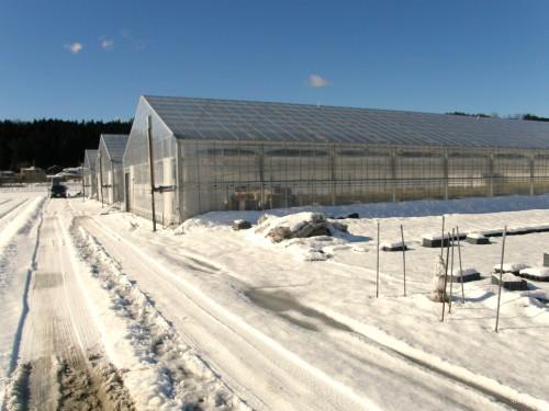 16 1 19 雪 第二農場