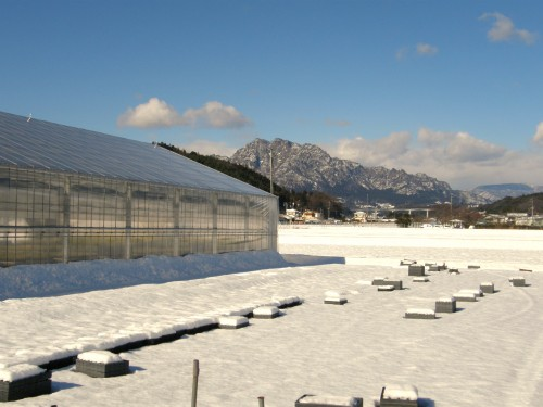 16 1 19 雪 第二農場から妙義山
