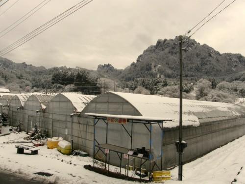 16 1 30 妙義山 雪 2